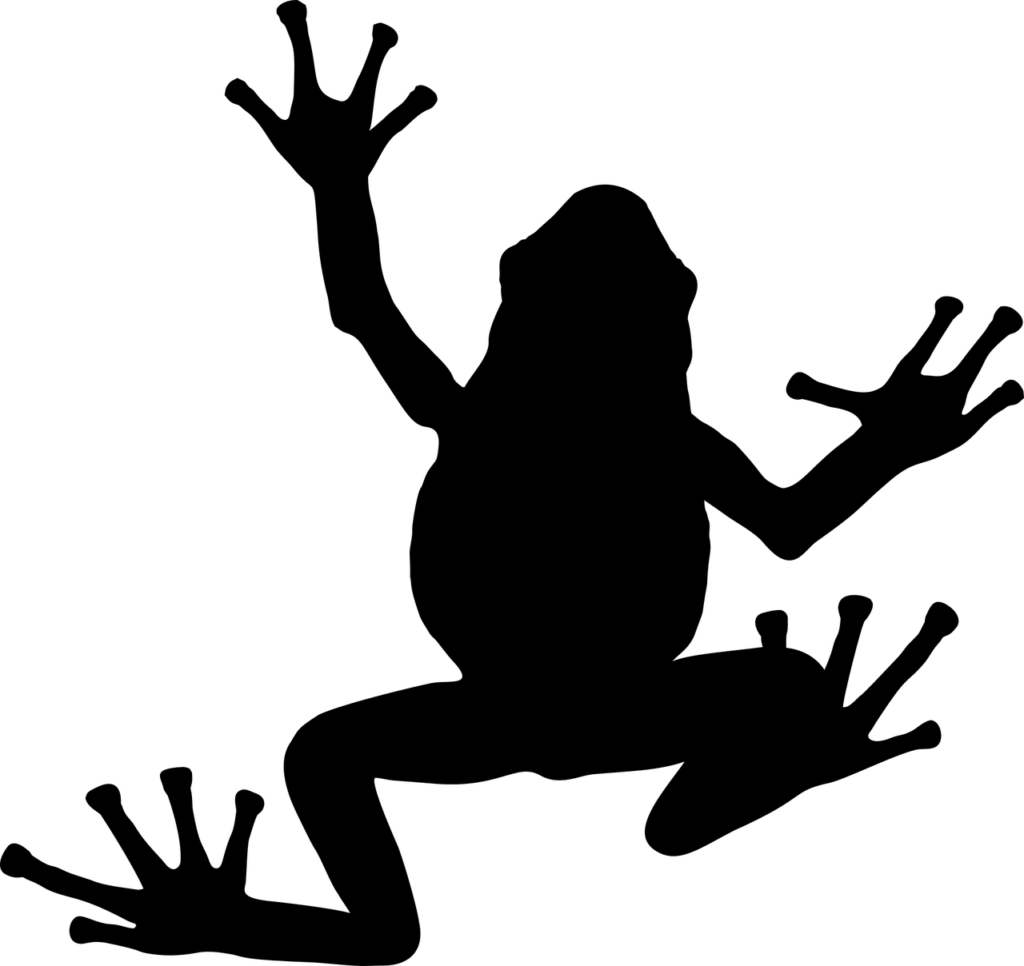 Kalanipoo thavalai frog
